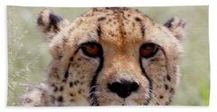 Cheetah No.1 Hand Towel
