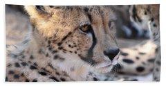 Cheetah And Friends Bath Towel