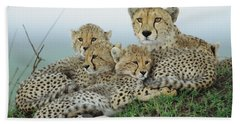 Cheetah And Her Cubs Hand Towel