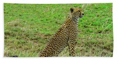 Cheetah On The Serengeti Bath Towel