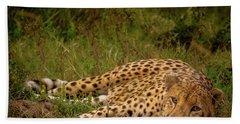 Cheetah Resting, Masai-mara Bath Towel