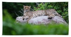 Cheetah Rests On A Rock Hand Towel