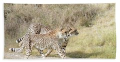 Hand Towel featuring the photograph Cheetah Trot 2 by Fraida Gutovich