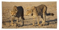 Cheetahs Bath Towel