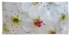 Hand Towel featuring the photograph Cherry Blooms by Darren White