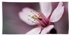 Cherry Blossom Hand Towel by Joseph Skompski