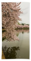 Cherry Blossoms Along The Tidal Basin 8x10 Hand Towel