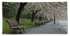 Cherry Blossoms And Benches Hand Towel