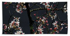Cherry Blossoms On Dark Bkgrd Hand Towel