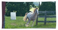 Chester On The Run Bath Towel by Donald C Morgan