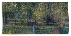 1009 - Chestnut Horse Among The Trees Hand Towel