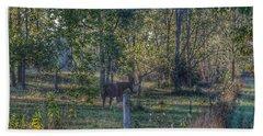 1009 - Chestnut Horse Among The Trees Bath Towel
