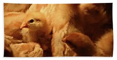 Bath Towel featuring the photograph Chicks by Mary Machare