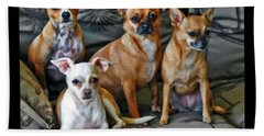 Chihuahuas Hanging Out Bath Towel