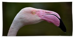Chilean Flamingo Portrait Bath Towel