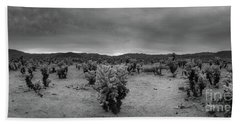 Cholla Cactus Garden Sunset Panorama Bw Hand Towel