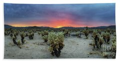 Cholla Cactus Garden Sunset Panorama  Hand Towel