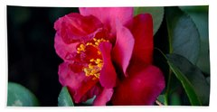 Bath Towel featuring the photograph Christmas Camellia by Marie Hicks