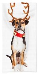 Christmas Reindeer Dog Tall Banner Hand Towel