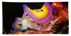 Chromodoris Kunei Nudibranch  Bath Towel
