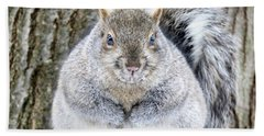 Chubby Squirrel Bath Towel by Brook Burling