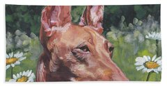 Hand Towel featuring the painting Cirneco Dell'etna by Lee Ann Shepard