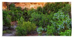 Bath Towel featuring the photograph Cliff Palace At Mesa Verde National Park - Colorado by Jason Politte
