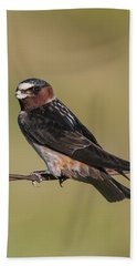Cliff Swallow Bath Towel