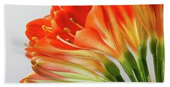 Clivia Miniata 2 Hand Towel by Shirley Mitchell