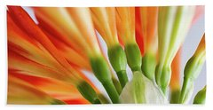 Clivia Miniata 5 Hand Towel by Shirley Mitchell