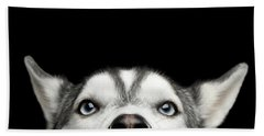 Close-up Head Of Peeking Siberian Husky Bath Towel
