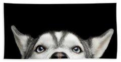 Close-up Head Of Peeking Siberian Husky Bath Towel