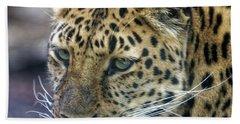 Close Up Of Leopard Bath Towel
