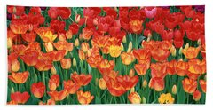 Close-up Of Tulips In A Garden Hand Towel