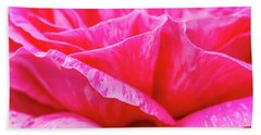Close Up Of Variegated Pink And White Rose Petals Bath Towel