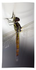 Close Up Shoot Of A Anisoptera Dragonfly Bath Towel