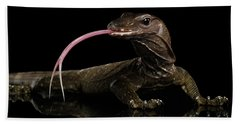 Close-up Varanus Rudicollis Isolated On Black Background Hand Towel by Sergey Taran