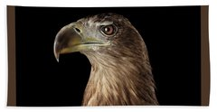 Close-up White-tailed Eagle, Birds Of Prey Isolated On Black Background Bath Towel