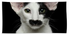 Closeup Funny Oriental Shorthair Looking At Camera Isolated, Bla Bath Towel