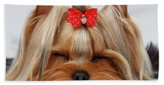 Closeup Yorkshire Terrier Dog With Closed Eyes Lying On White  Bath Towel