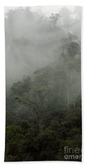 Cloud Forest Hand Towel by Kathy McClure
