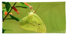 Bath Towel featuring the photograph Clouded Sulphur Butterfly Macro by Kathy Baccari