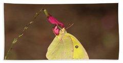 Clouded Sulphur Butterfly On Pink Wildflower Bath Towel