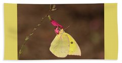 Clouded Sulphur Butterfly On Pink Wildflower Bath Towel by Sheila Brown
