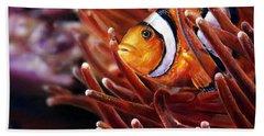 Clownfish Hand Towel
