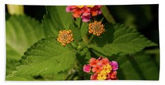 Cluster Of Lantana Flowers Hand Towel