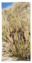 Coastal Grasses Bath Towel