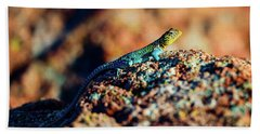 Hand Towel featuring the photograph Collared Lizard by Tamyra Ayles