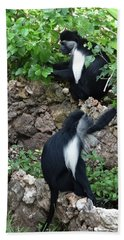 Colobus Monkey Eating Leaves For Breakfast Bath Towel
