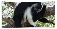 Colobus Monkey Resting In A Tree Hand Towel